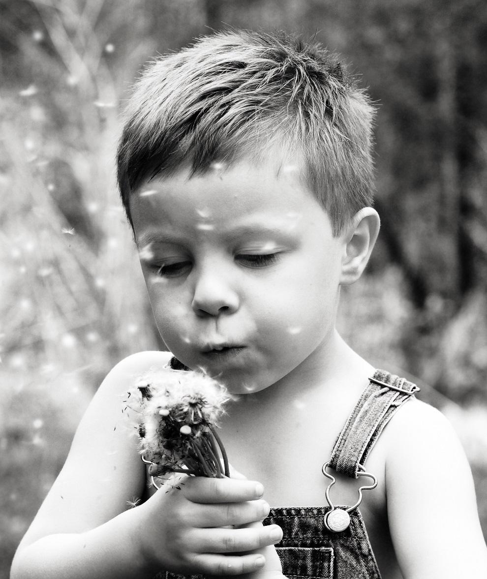 Poika puhaltaa voikukan höytyviä.
